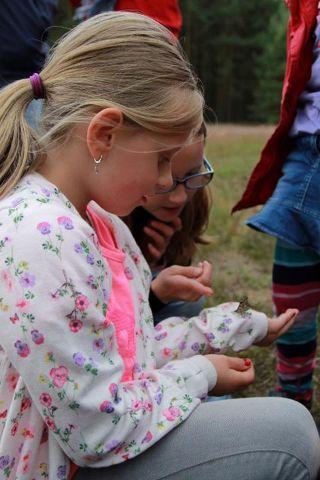 Schmetterling auf Hand (2)