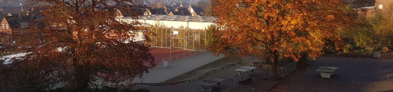 Der Schulgarten im Herbst