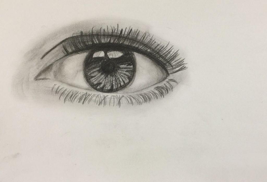 Auge 5