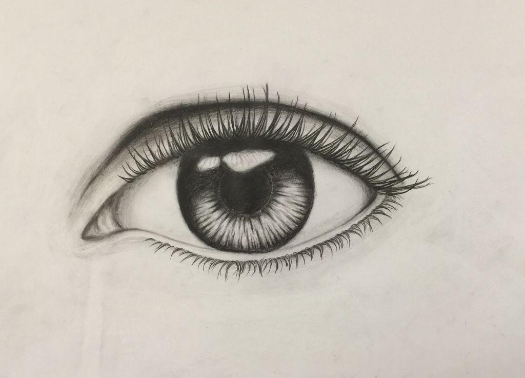 Auge referenz