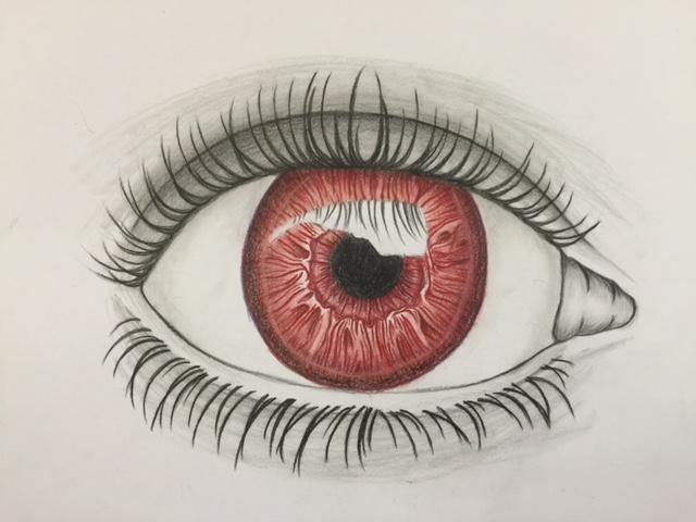 Augen bunt3