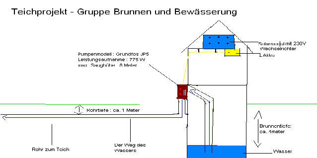 Schulgarten7